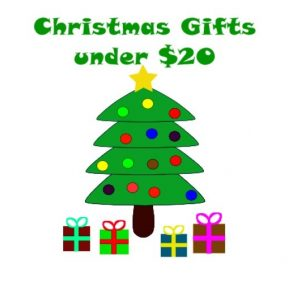 Christmas Gift Ideas Under $20.00